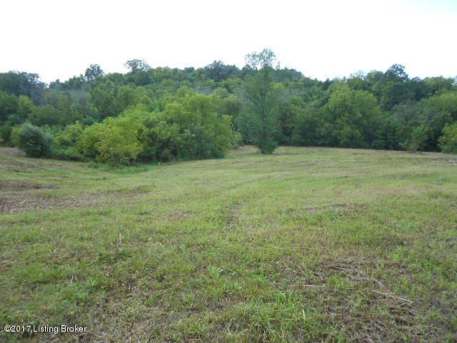 Land for Sale at 1131 Lanes Mill Lawrenceburg, Kentucky 40342 United States
