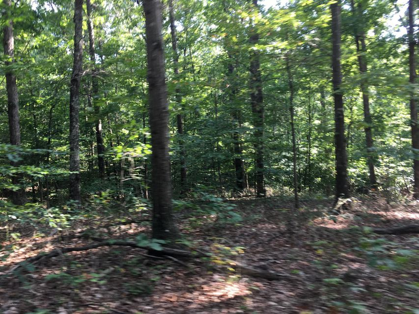 Land for Sale at 8 Harts Ferry 8 Harts Ferry Lebanon Junction, Kentucky 40150 United States