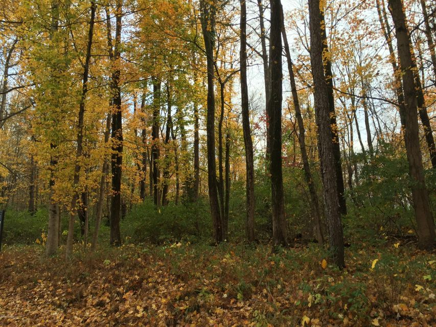 Land for Sale at 5222 Blakely Ridge Glenview, Kentucky 40025 United States