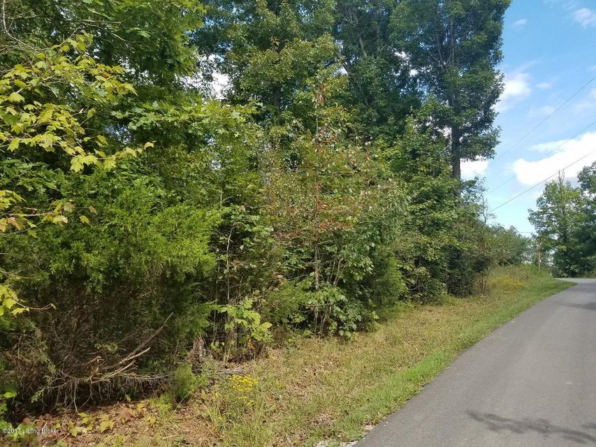 Additional photo for property listing at Greenshores Greenshores McDaniels, Kentucky 40152 United States