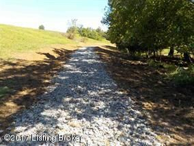 Land for Sale at 1 Chaplin Fork 1 Chaplin Fork Bloomfield, Kentucky 40008 United States