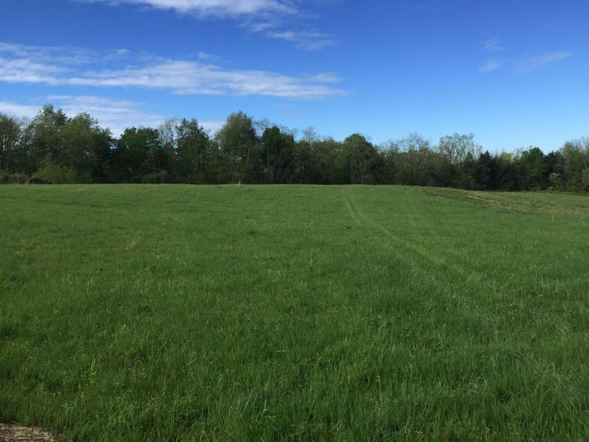 Land for Sale at 1 Flood 1 Flood Shelbyville, Kentucky 40065 United States