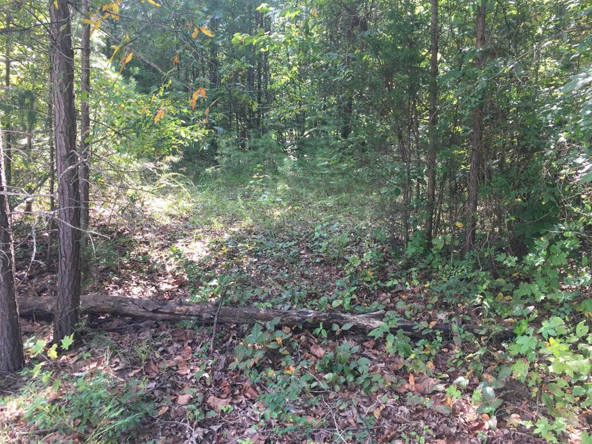 Land for Sale at Nat Rogers Boston, Kentucky 40107 United States