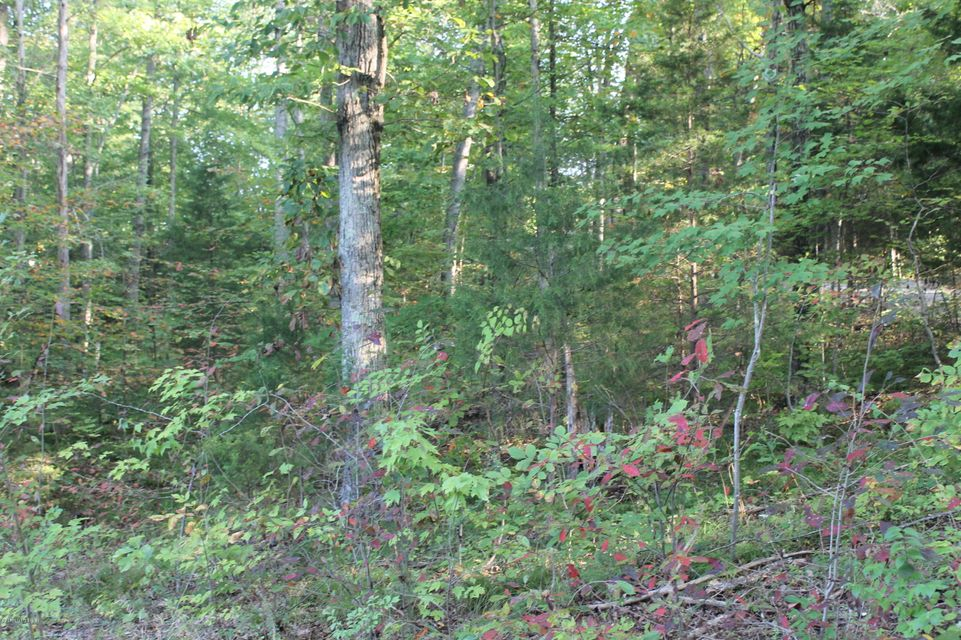 Land for Sale at 302 Pineview 302 Pineview Mammoth Cave, Kentucky 42259 United States