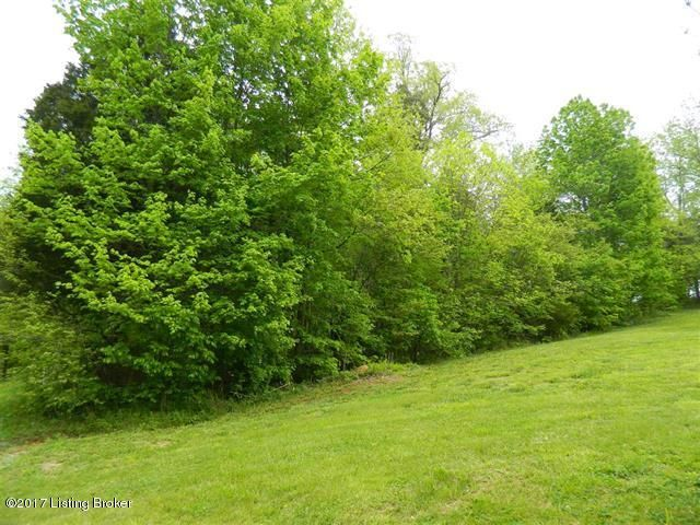 Land for Sale at 1 Penny 1 Penny Elizabethtown, Kentucky 42701 United States