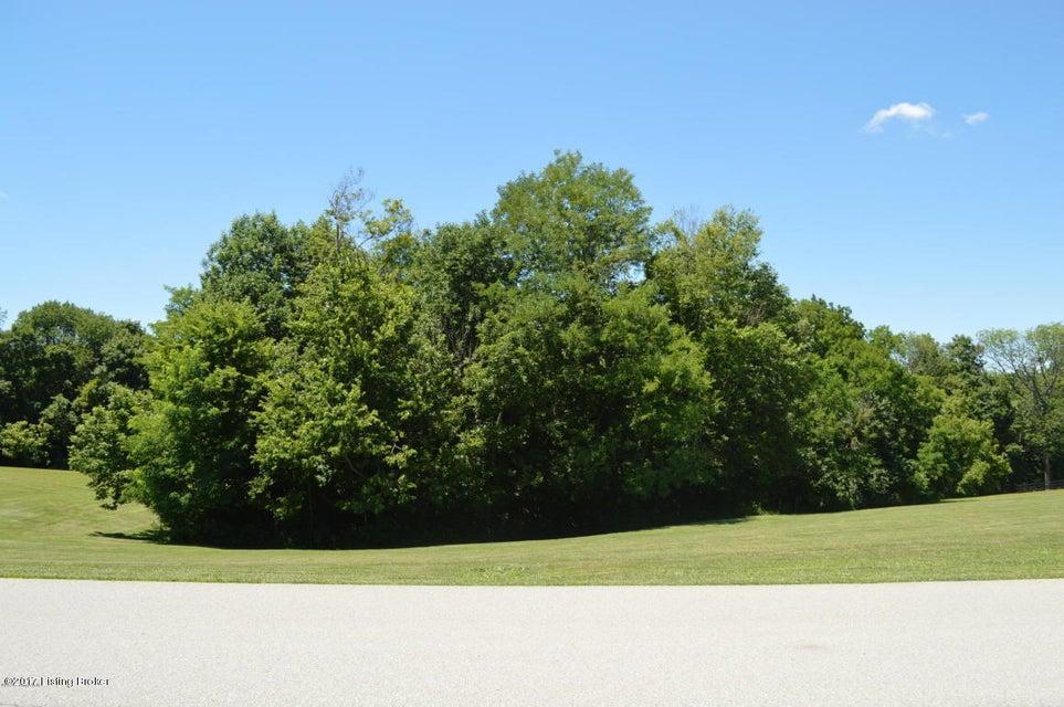 Land for Sale at 19 Flint Ridge 19 Flint Ridge Shelbyville, Kentucky 40065 United States