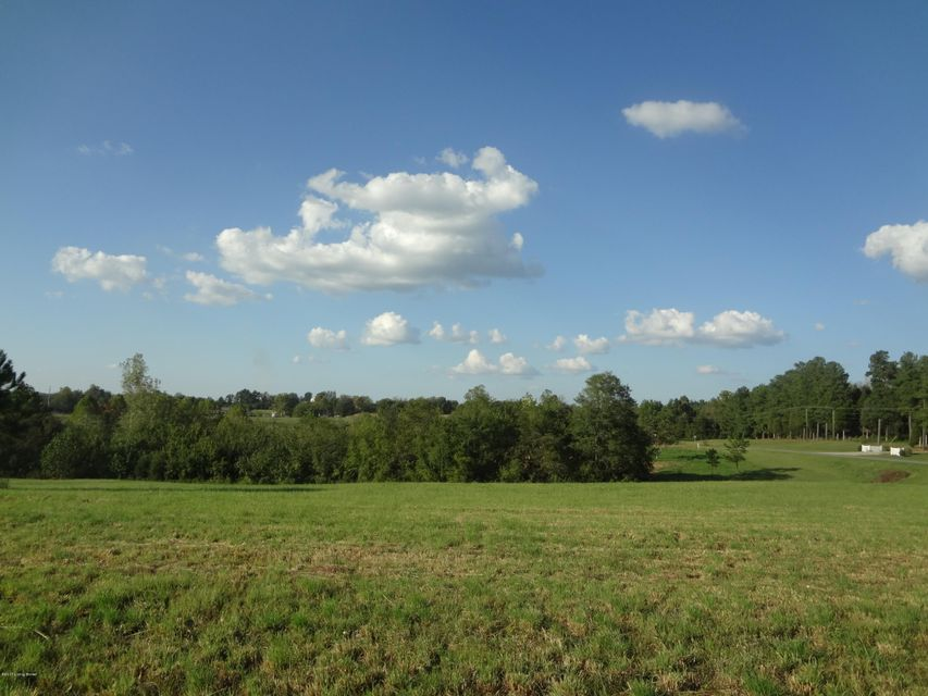 Land for Sale at Hwy. 79 Hwy. 79 Falls Of Rough, Kentucky 40119 United States