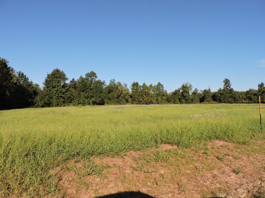 Land for Sale at 623 Allen Farm 623 Allen Farm Cloverport, Kentucky 40111 United States