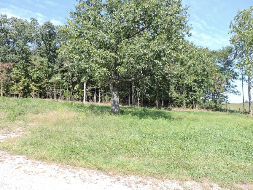 Land for Sale at 457 Hwy 690 457 Hwy 690 Harned, Kentucky 40144 United States
