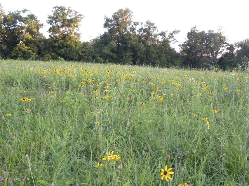 Land for Sale at LOT 45 Fox Lair LOT 45 Fox Lair Fisherville, Kentucky 40023 United States