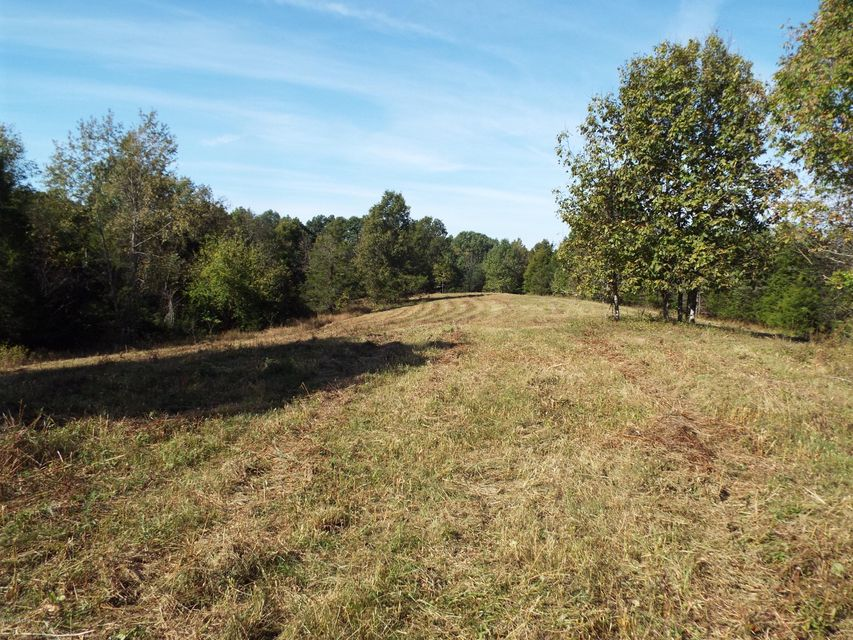 Land for Sale at 2A Ditto 2A Ditto Waddy, Kentucky 40076 United States