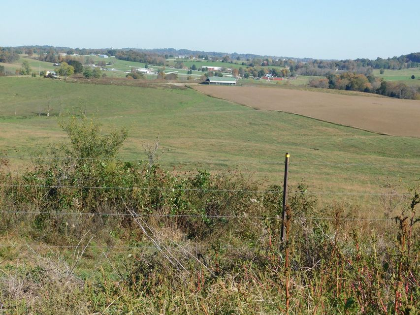 Land for Sale at 4699 Owensboro 4699 Owensboro Leitchfield, Kentucky 42754 United States