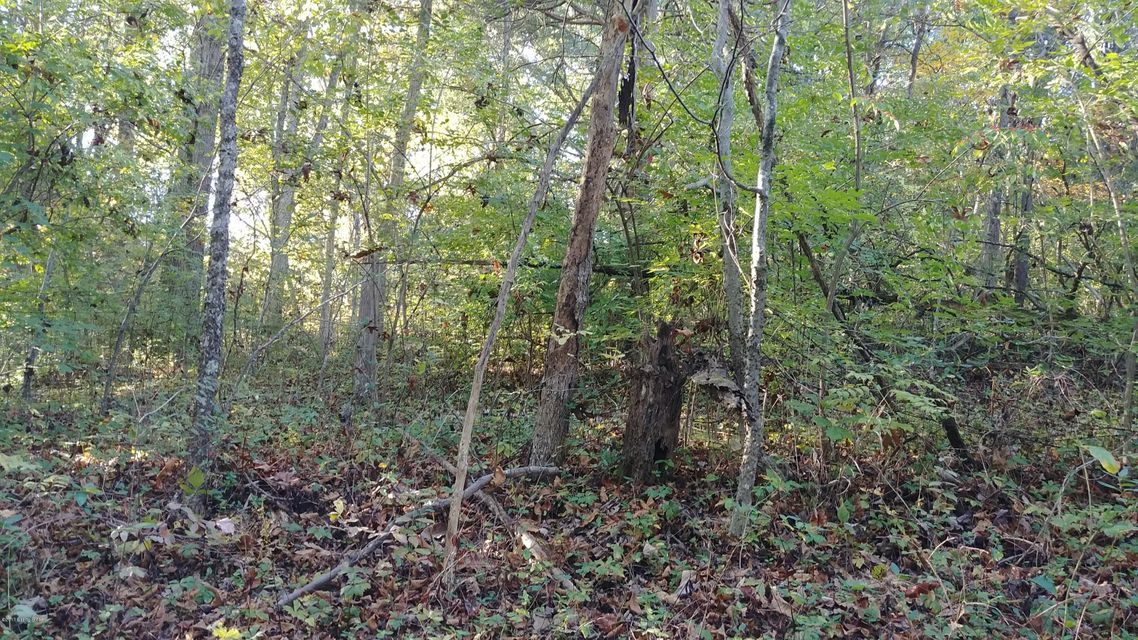 Additional photo for property listing at Lot 13 Wood Valley Lot 13 Wood Valley Louisville, Kentucky 40299 United States