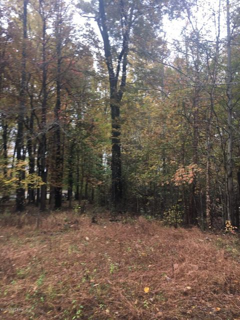 Land for Sale at 1315 Holly 1315 Holly Fairdale, Kentucky 40118 United States