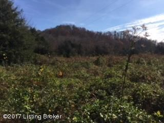 Land for Sale at Green Tree Green Tree Edmonton, Kentucky 42129 United States