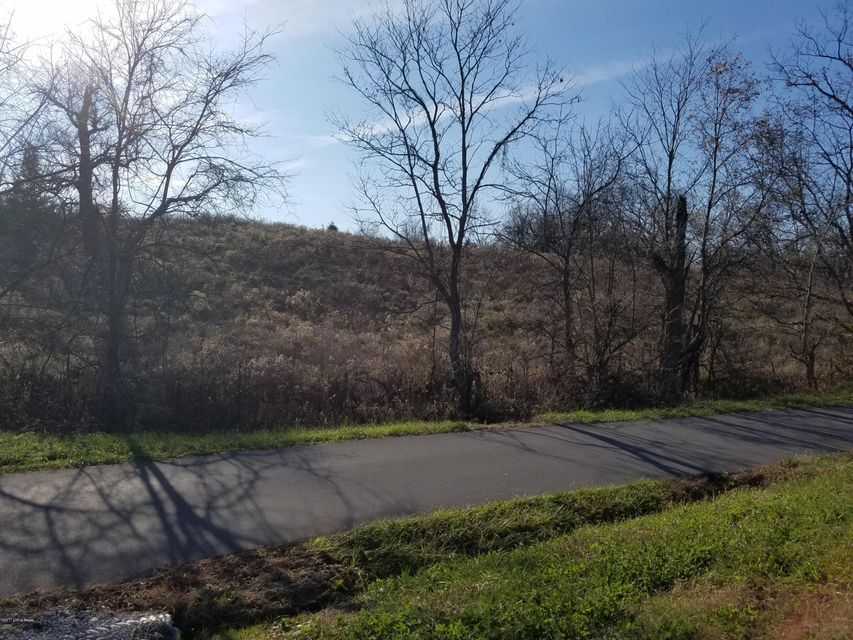 Land for Sale at Jones Jones Campbellsburg, Kentucky 40011 United States