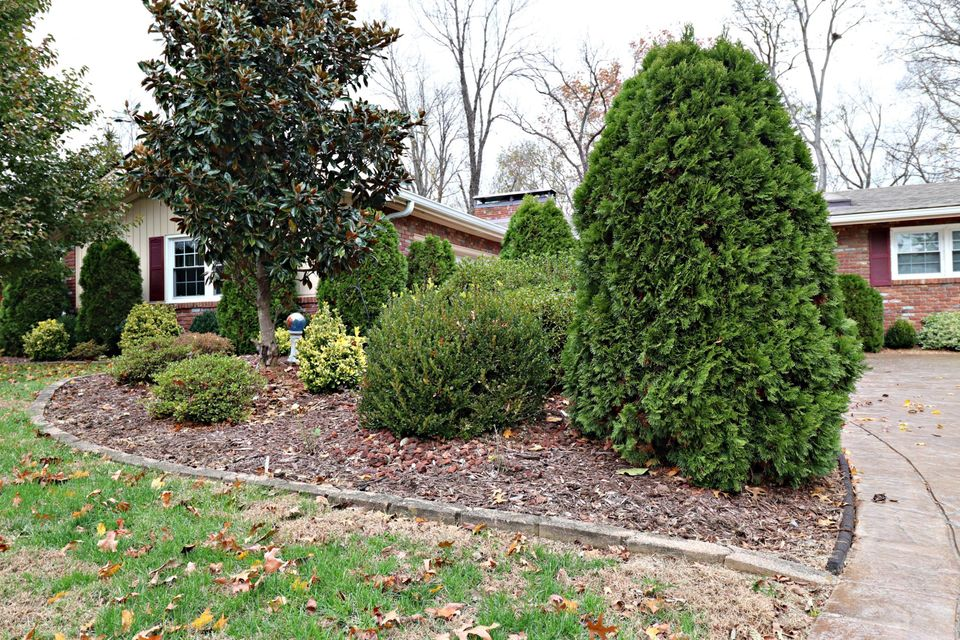 Additional photo for property listing at 141 Tanglewood Trail 141 Tanglewood Trail Louisville, Kentucky 40223 United States
