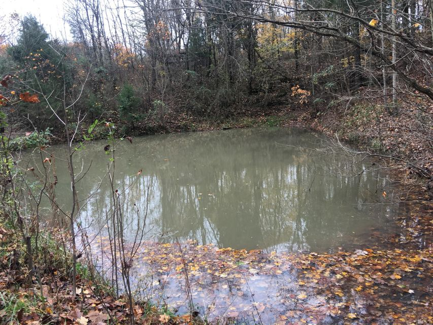 Land for Sale at 4227 Mt Pleasant 4227 Mt Pleasant Bedford, Kentucky 40006 United States