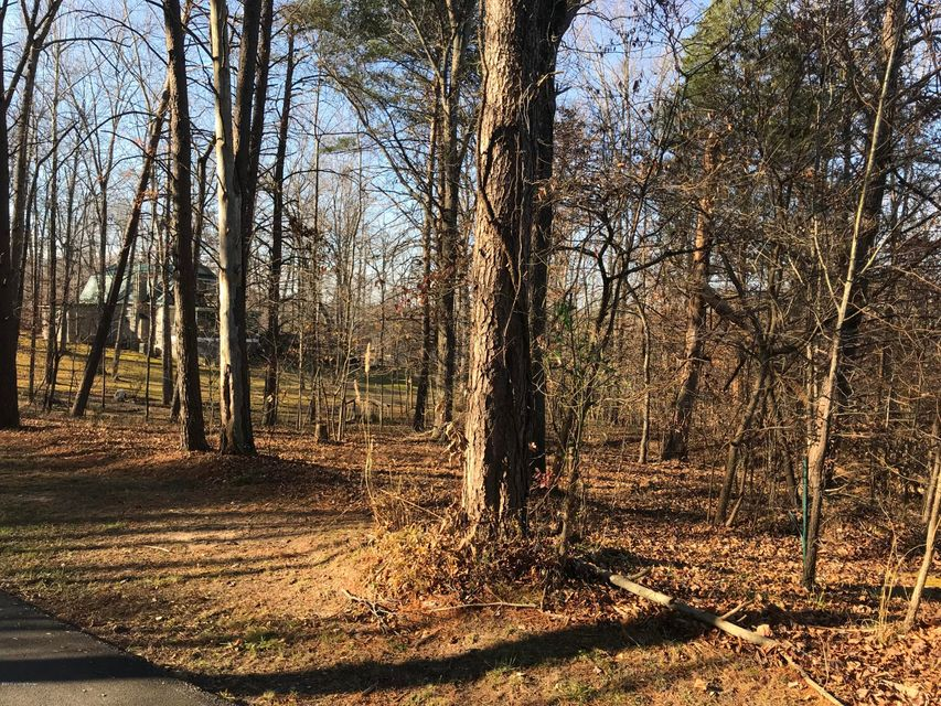 Additional photo for property listing at 364 Michaels Cove 364 Michaels Cove Leitchfield, Kentucky 42754 United States
