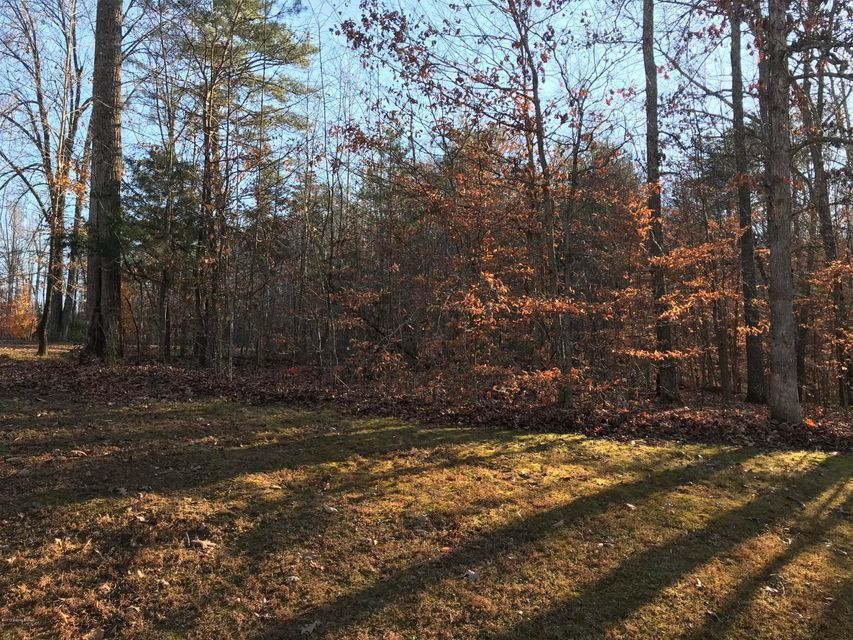 Land for Sale at 482 Michaels Cove 482 Michaels Cove Leitchfield, Kentucky 42754 United States