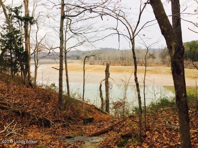 Land for Sale at 41 Robbin 41 Robbin Cub Run, Kentucky 42729 United States