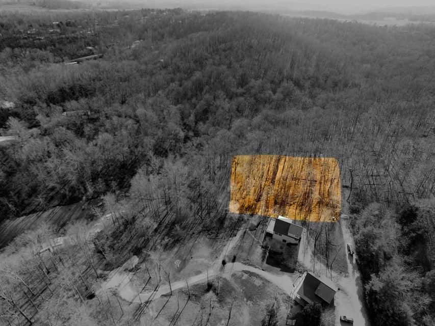 Land for Sale at 38 Tara 38 Tara Cub Run, Kentucky 42729 United States