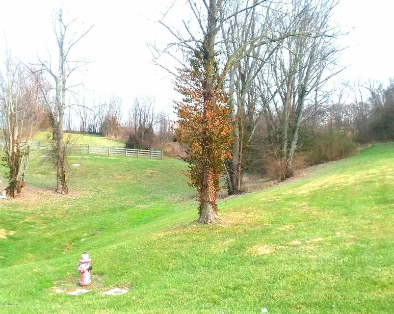 Additional photo for property listing at 1003 Christopher Crossing 1003 Christopher Crossing Shelbyville, Kentucky 40065 United States