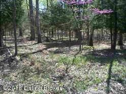 Land for Sale at 223 Pine View 223 Pine View Brandenburg, Kentucky 40108 United States