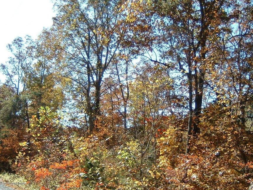 Land for Sale at 86 Blueberry Hill 86 Blueberry Hill Bee Spring, Kentucky 42207 United States