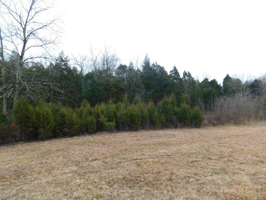 Land for Sale at Highway 79 Highway 79 Falls Of Rough, Kentucky 40119 United States