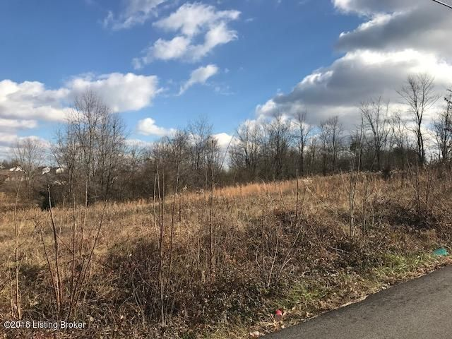 Land for Sale at 357 Old Veechdale 357 Old Veechdale Simpsonville, Kentucky 40067 United States