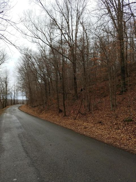 Land for Sale at Dog Creek Dog Creek Caneyville, Kentucky 42721 United States