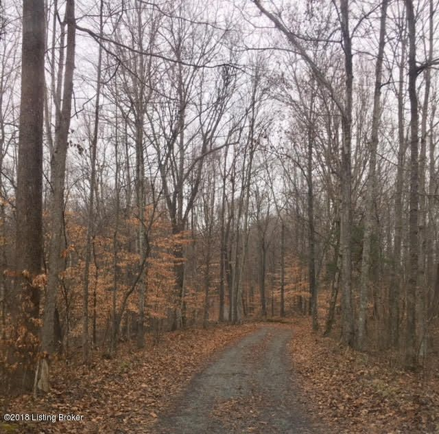 Land for Sale at 776 Howard School 776 Howard School Greensburg, Kentucky 42743 United States