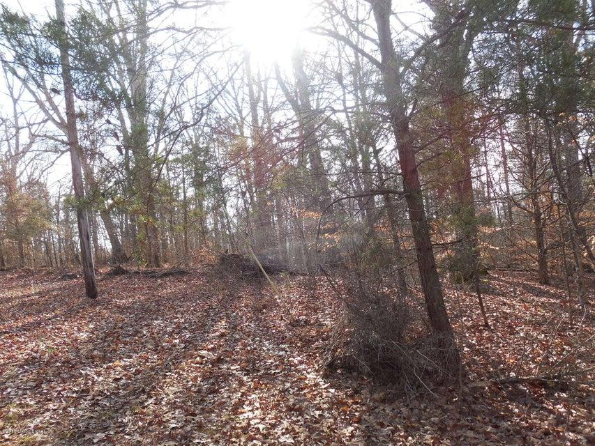 Land for Sale at 64 Tee Pee 64 Tee Pee Cub Run, Kentucky 42729 United States