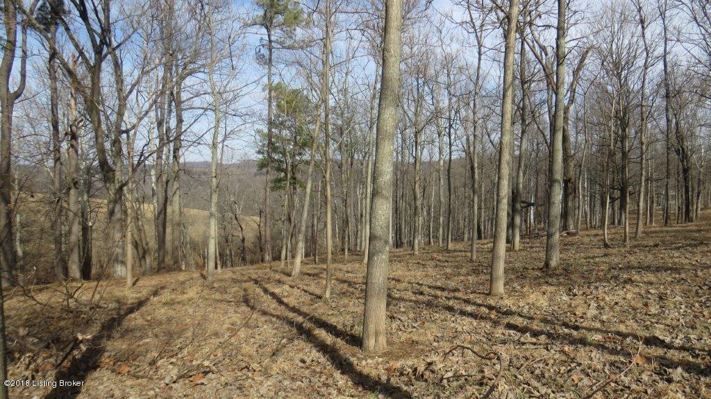 Land for Sale at Lot 3 Paulownia Lot 3 Paulownia Battletown, Kentucky 40104 United States