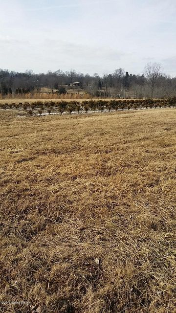 Land for Sale at 1 Old Floydsburg 1 Old Floydsburg Pewee Valley, Kentucky 40056 United States