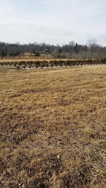 Land for Sale at 2 Old Floydsburg 2 Old Floydsburg Pewee Valley, Kentucky 40056 United States
