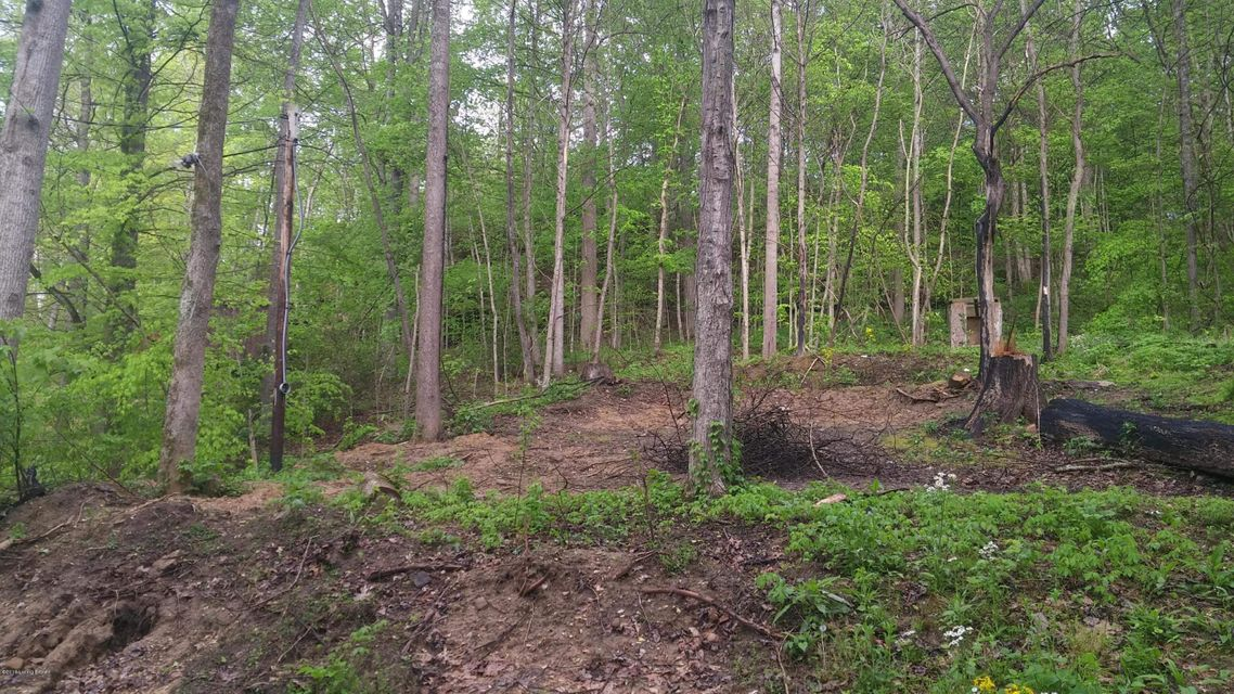 Land for Sale at 115 Hollow Creek 115 Hollow Creek Mammoth Cave, Kentucky 42259 United States