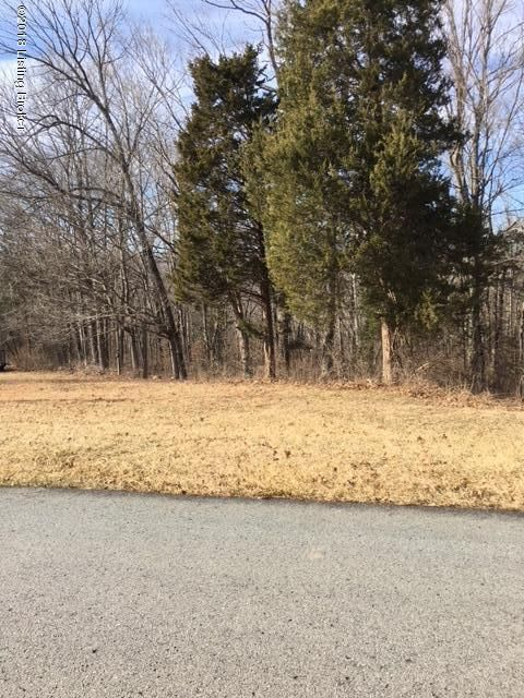 Land for Sale at W Laurel River W Laurel River Shepherdsville, Kentucky 40165 United States