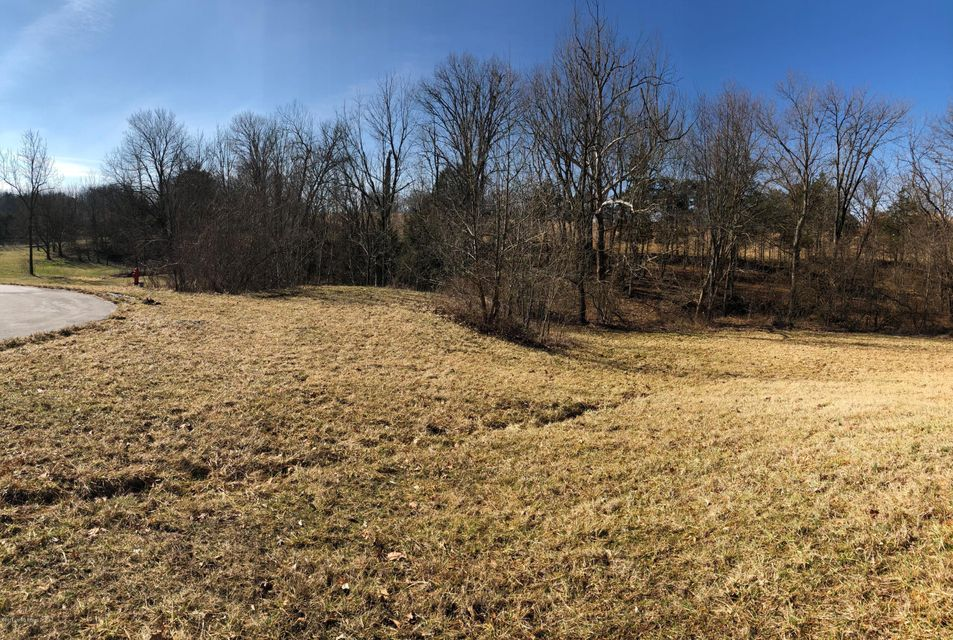 Land for Sale at Lot 22, 23 Creeke Point Lot 22, 23 Creeke Point Coxs Creek, Kentucky 40013 United States