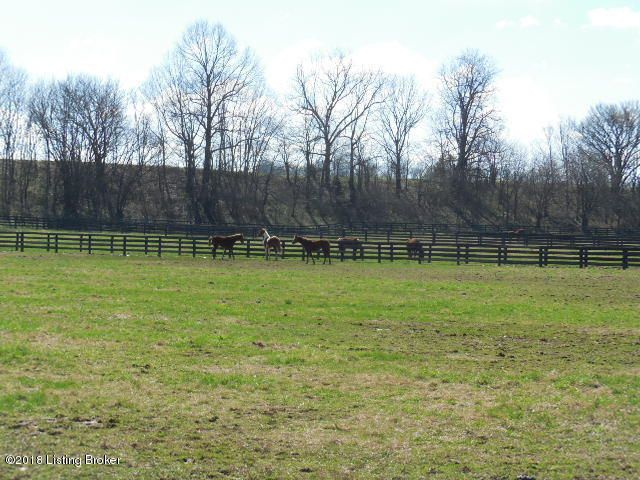 Additional photo for property listing at 199 Picketts Dam Road 199 Picketts Dam Road Shelbyville, Kentucky 40065 United States