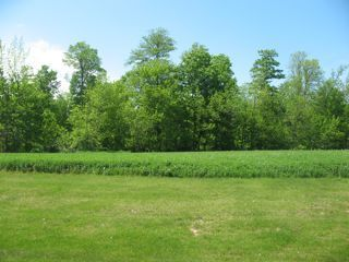 Photo of home for sale at Lt6 Danmar Acres, Whitelaw WI