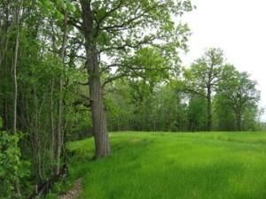 Photo of home for sale at W195N17227 English Oaks Dr, Jackson WI