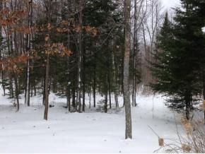Photo of home for sale at Lt72 Johnson Falls Rd, Crivitz WI