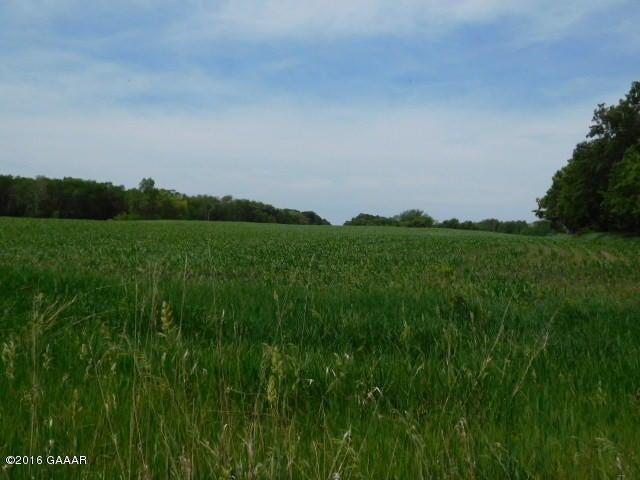 11.5 Acres Lake Ida Way NW, Alexandria, MN 56308