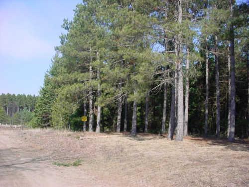 BIG TEN Trail, Wausaukee, WI 54177
