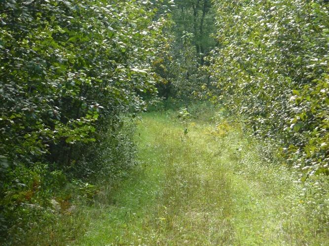 N1969 N1 Road, Menominee, MI 49858