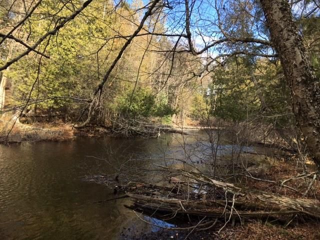 Armstrong Creek Ct S Lot 80, Laona, WI 54541