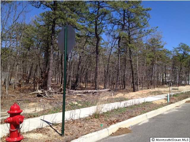 Additional photo for property listing at Hoyt Street  Forked River, Nueva Jersey 08731 Estados Unidos