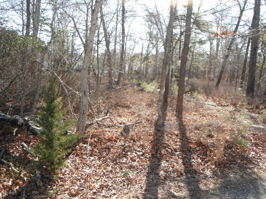 Additional photo for property listing at 109 Tide Court  Manahawkin, New Jersey 08050 États-Unis